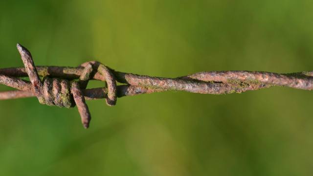 barbed_wire_rusty