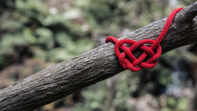 celtic_knot_heart_unsplash