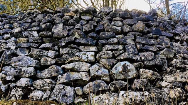 dry_stone_wall