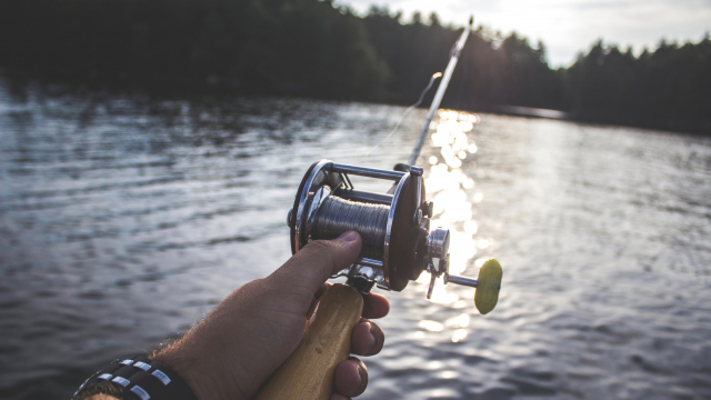 fishing_rod_lake_unsplash