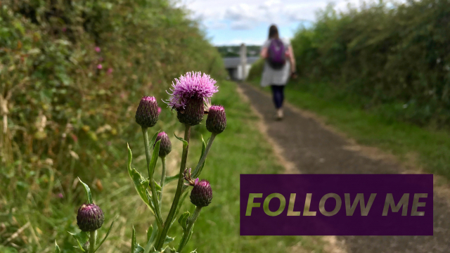 Follow Me (May)
