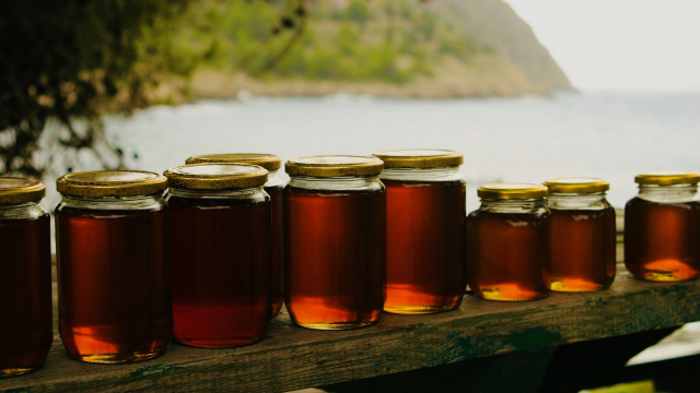 honey_jars_bench_nature