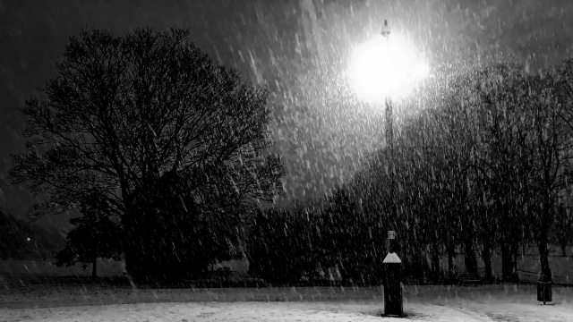 lampost_snow_bw