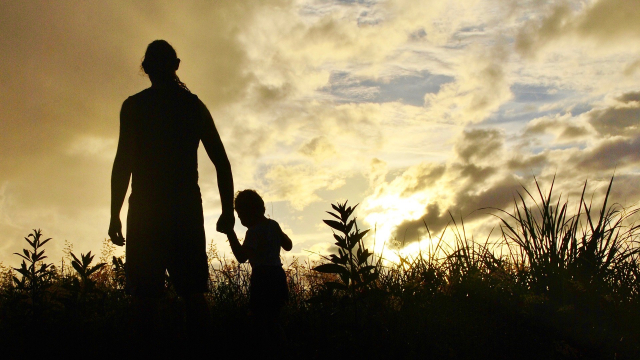 man_boy_silhouette_field