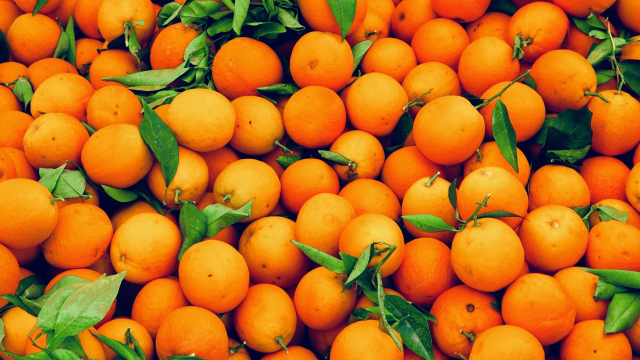 oranges_pile_fruit