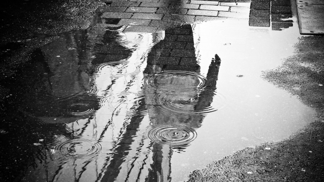 rain_puddle_urban