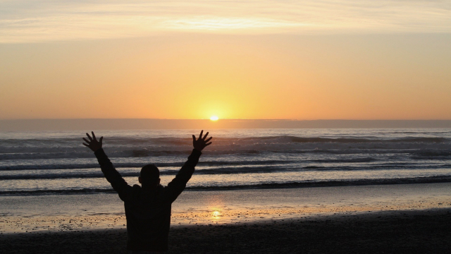 sunset_arms_up_silhouette