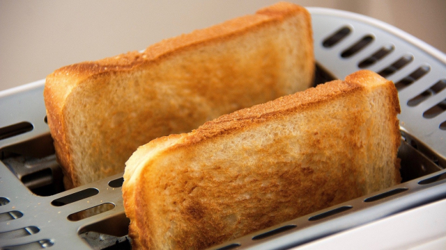 toast_toaster_breakfast