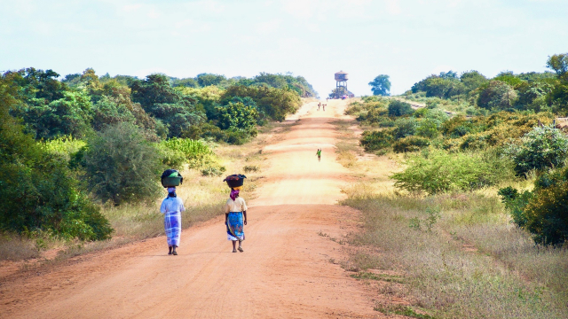 women_walking_road_carrying